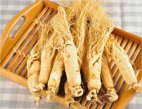 Sâm nhung Hàn Quốc - Korean Ginseng Capsule Gold - Viên đạm sâm