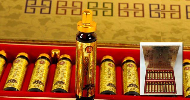 Dong trung Ha thao dang ong