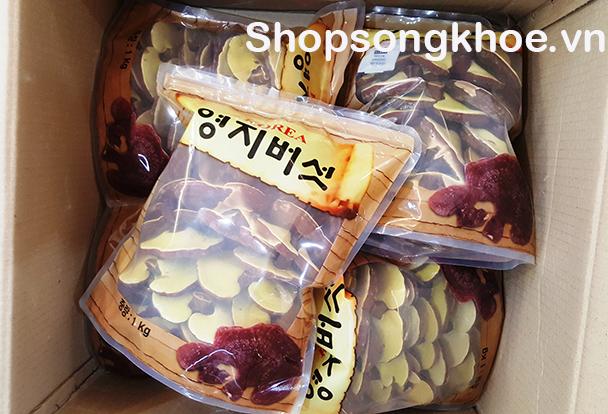 Nấm Linh Chi Hàn Quốc tự nhiên, tai nhỏ