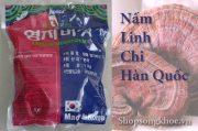 Nấm Linh Chi túi xanh cờ hàn quốc