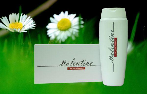 Dầu gội Valentine của Thái Dương