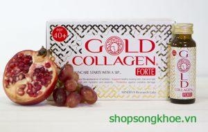 Forte gold collagen – Collagen cho phụ nữ trên 40 tuổi