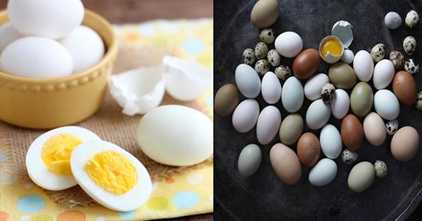 Trứng gà trứng cút trứng vịt loại nào tốt nhất cho bé