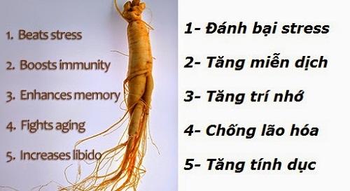 Nước Hồng Sâm Hàn Quốc và Oriental Raisin Tree giúp tăng cường sức khỏe